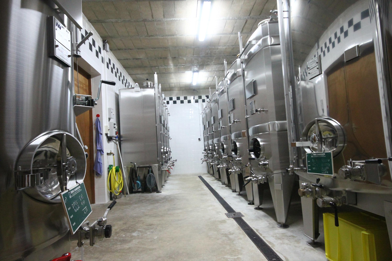 Cuves de fermentation - Élaboration du vin - Champagne Roger Lustig